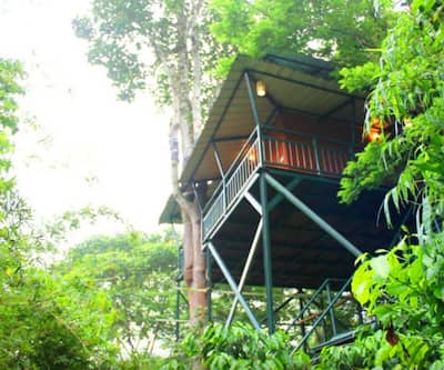 Coffee Acres Plantation Resort,Wayanad