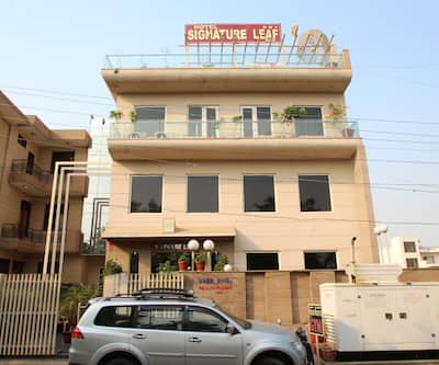 The Signature Leaf by Olive Inn,Gurgaon