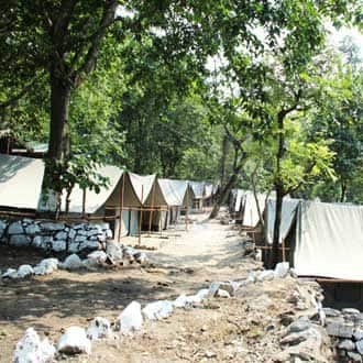 Camp White Bubble Adventure,Rishikesh