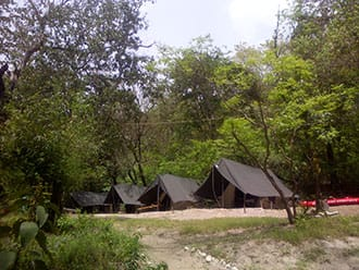 Camp Rapid Runner,Rishikesh