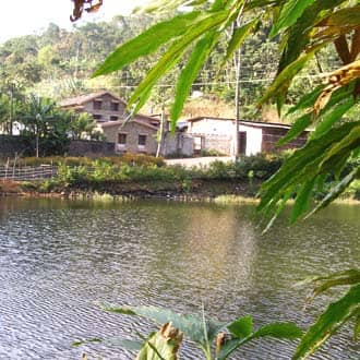 Tabernacle Resort,Thekkady
