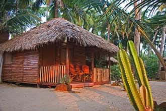 White Sand Beach Huts,Goa