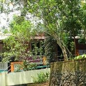 Jungle Bird Homestay,Cochin