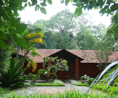 Blue Ginger Resorts,Wayanad