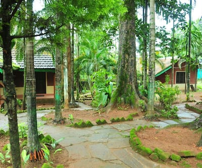 Green Line Stay,Coorg