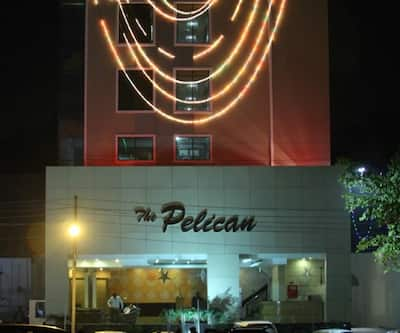 The Pelican,Chandigarh