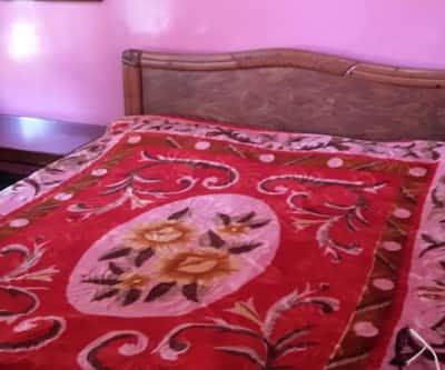 Hotel New Zeenath Guest House,Srinagar