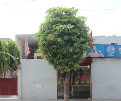 Malaya House,Jalandhar