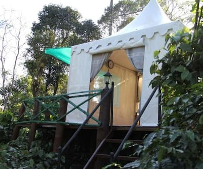 Discover Coorg Tent House,Coorg
