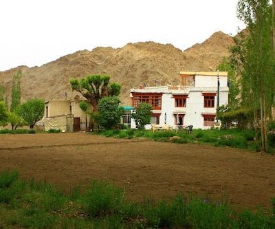 Goba Guest House,Leh