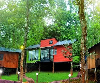 Jungle Beat Resort,Wayanad