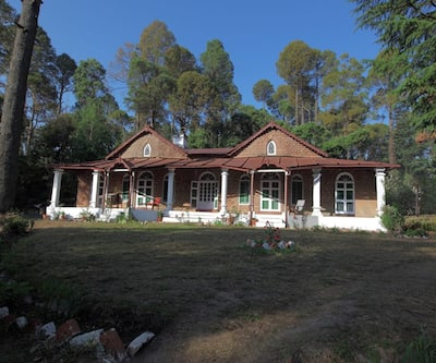 Camp Bliss,Ranikhet