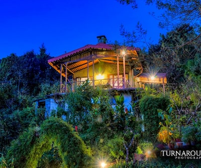 Jungle Lore Birding Lodge,Nainital