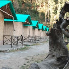 Camp Mashobra Greens, Shimla