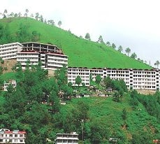 Hotel City Heights, Solan