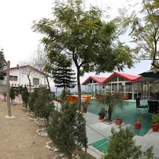 Maple Resort Chail, Chail