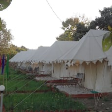 Royal Pushkar Camps, Pushkar