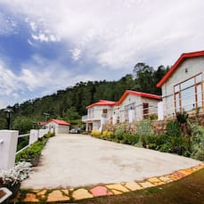 Village Live In Resort, Chail