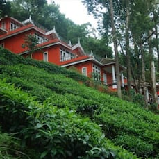 Tea Valley Adventures Resort, Munnar