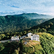Forest County, Munnar