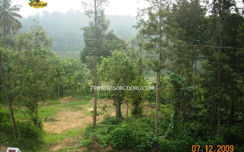 Discover Coorg Blue Valley, none,