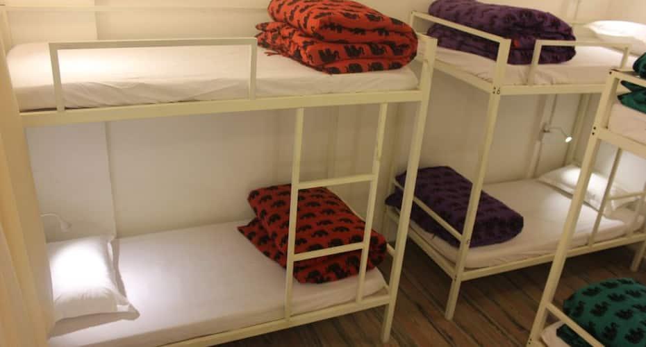 Roadhouse Hostels Jaipur, --None--,