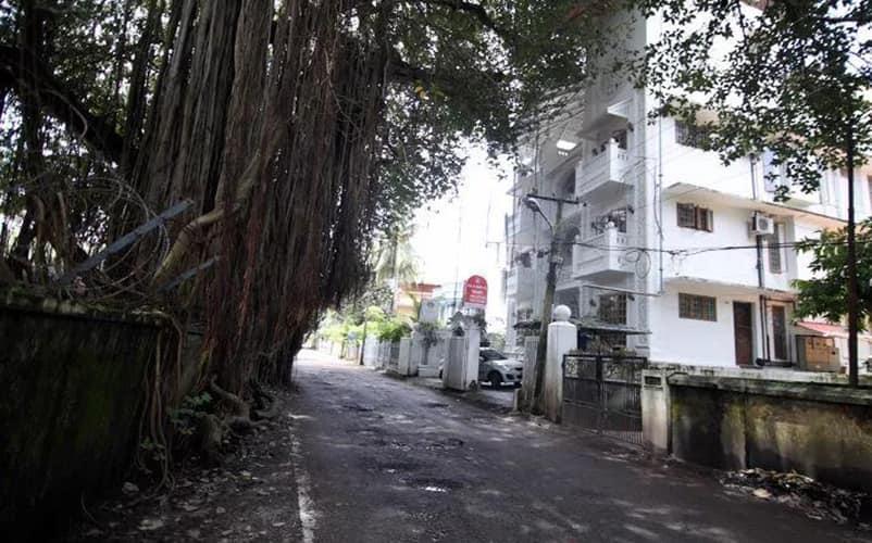 Banyan Tree, Fort Kochi,