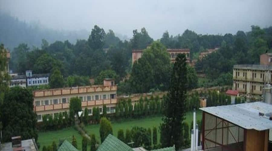 Hotel Raj Palace, none,