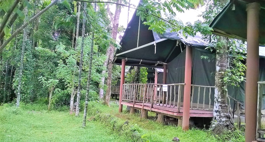 The Hornbill Camp,Munnar