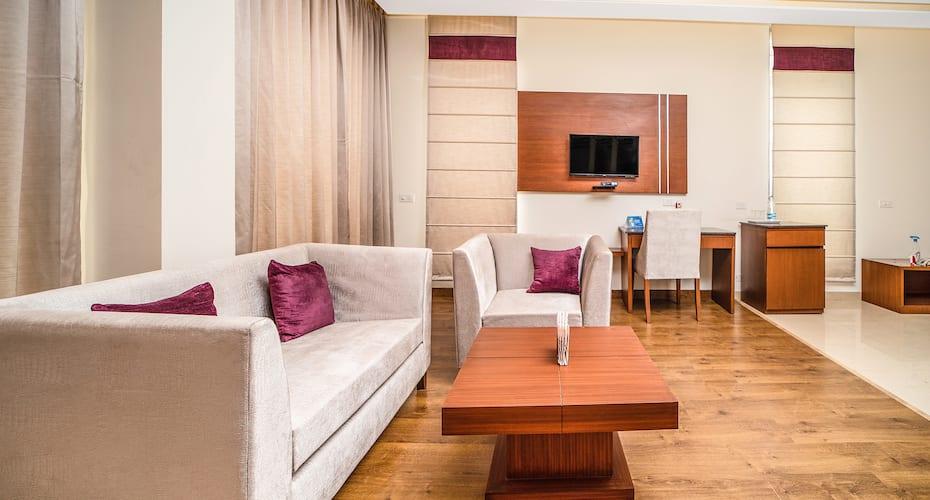 Hotel Myraa Zirakpur, none,