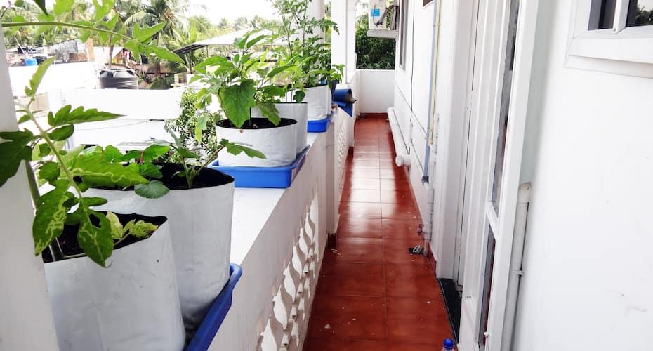 M S Residence, Fort Kochi,