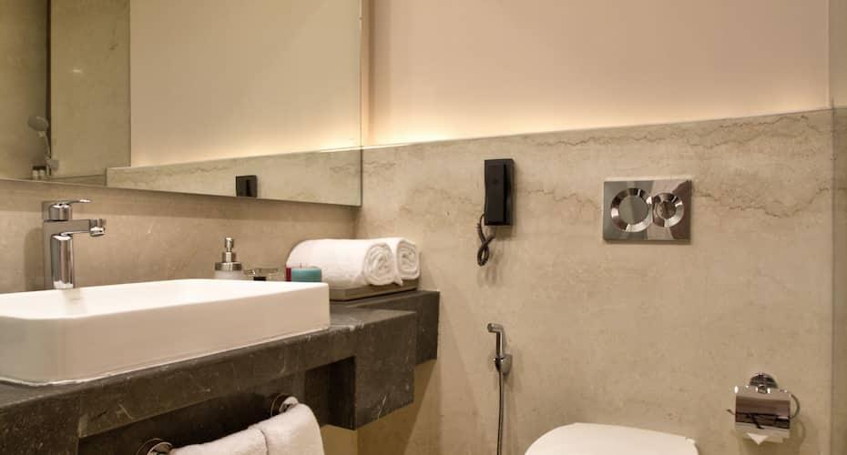 Hotel Sarovar Premiere Jaipur, none,