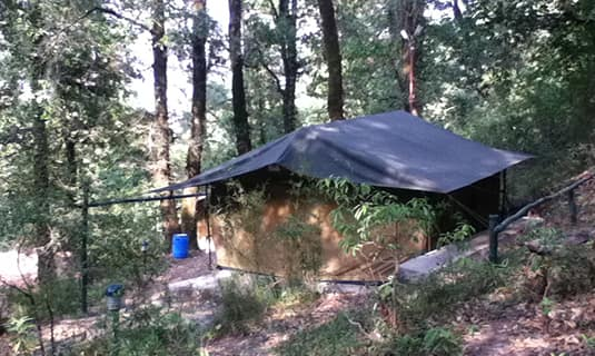 Ayar Jungle Camp, Mallital,
