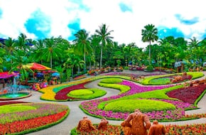 Nong Nooch Village Tour SIC