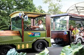 Jurong Bird Park with Tram Ride Admission Ticket Singapore