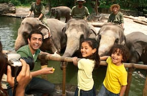 Singapore 4 Park Spl Combo: Singapore Zoo + Jurong Bird Park + River Safari + Night Safari