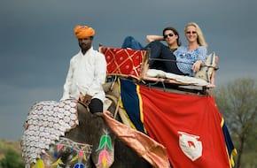 Elephant Experience Near Jaipur