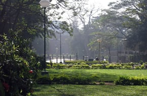 Cubbon Park Walk
