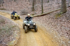 Buggy Or  Atv Riding On Forest Trails, Manali