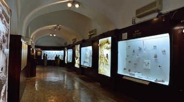 Purana Quila Museum