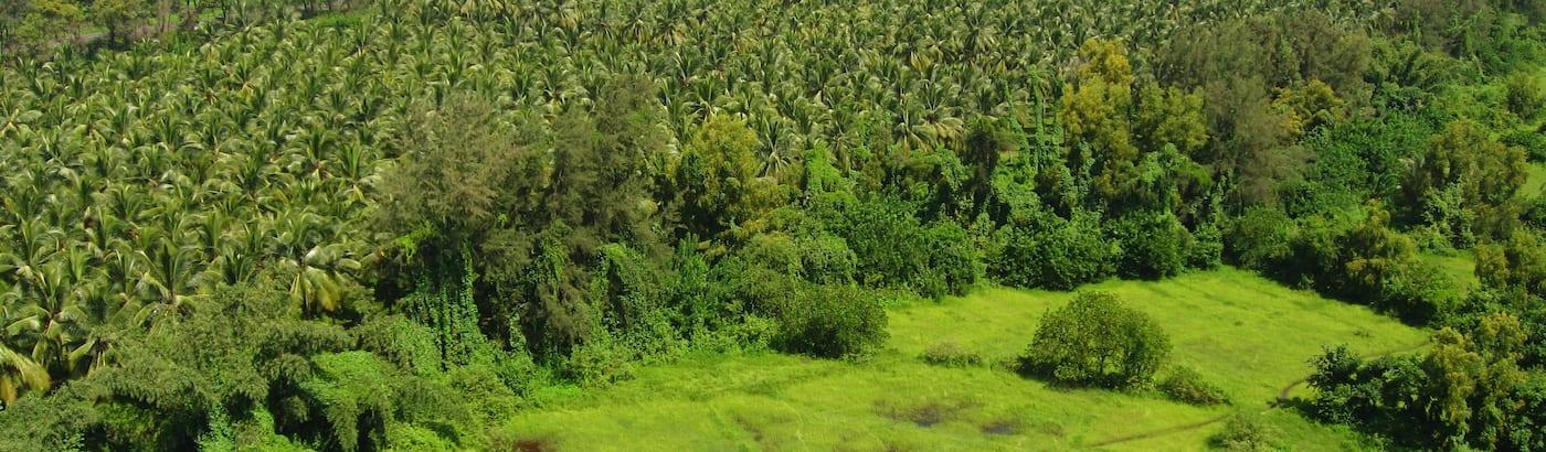 Ratnagiri Holiday Packages