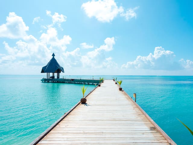 Book Explore Maldives With Canareef Resort Tour Packages