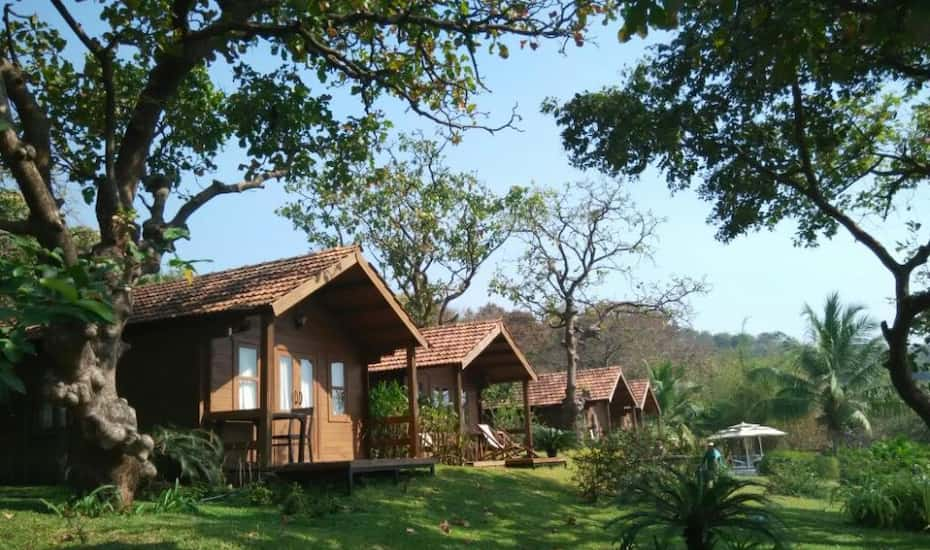 Stone Water Eco Resort Goa Price, Reviews, Photos & Address