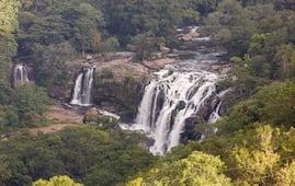 Thoovanam Falls and Chinnar Wildlife Sanctuary