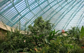 Sammilan Shettys Butterfly Park