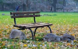 Shahidi Park