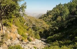 Mount Abu Wildlife Sanctuary