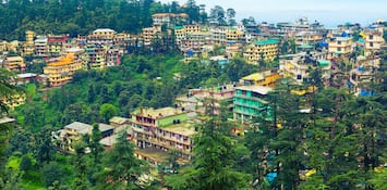 Experience The Vibrant Song And Dance Culture Of Dharamshala
