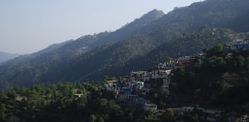 Pocket-Friendly Kasauli Homestays With Great Mountain Views