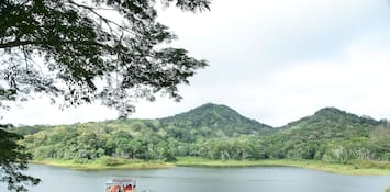 Thekkady Architecture: Where Tradition Meets The Contemporary